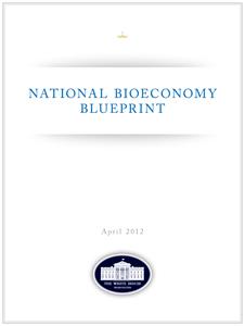 Bioeconomy Blueprint