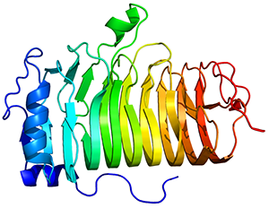 Protein_MS4A1_PDB_1S8B