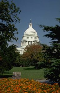 Washington - Capitol #6