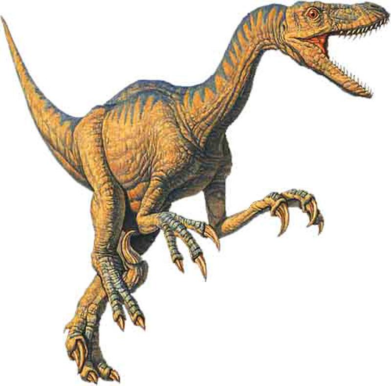 Velociraptor_x